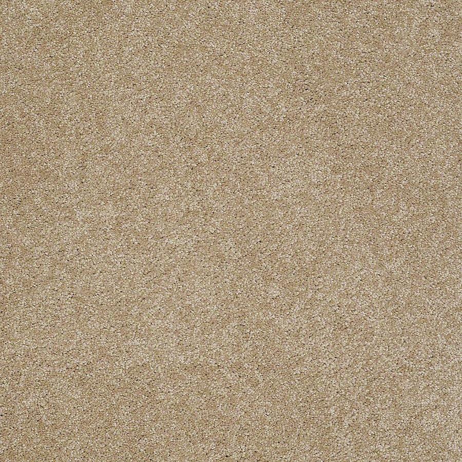 STAINMASTER PetProtect Baxter III Boxer Carpet Sample