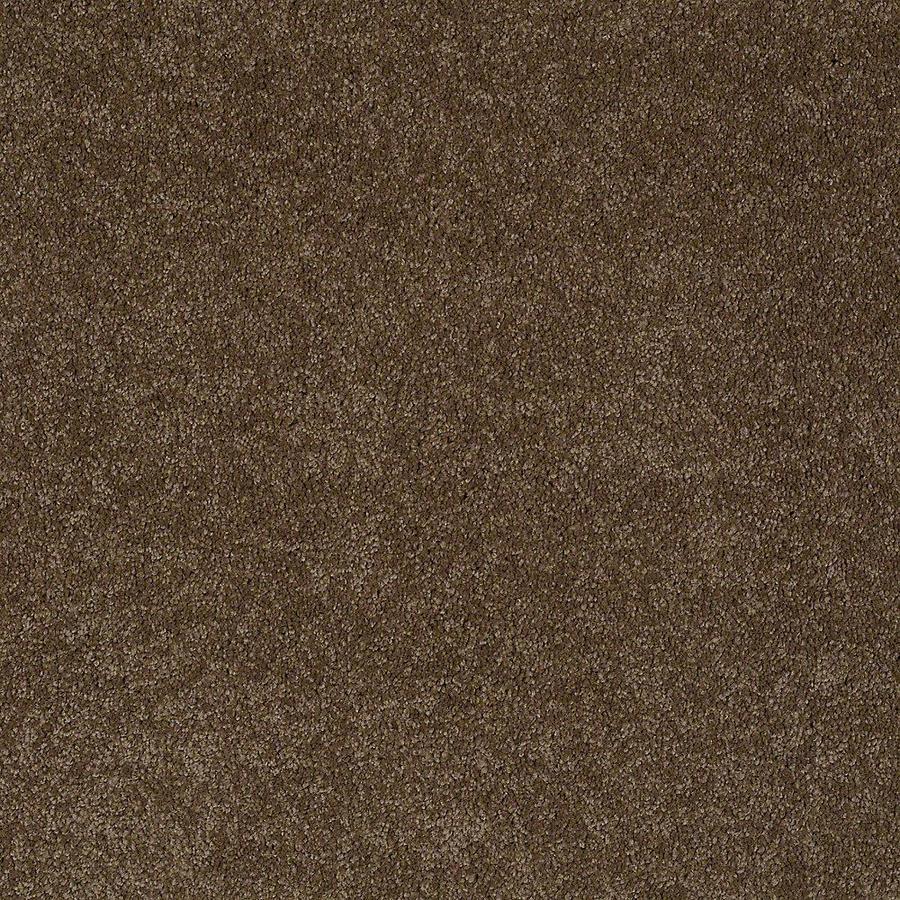 STAINMASTER Baxter III PetProtect Labrador Plush Carpet Sample