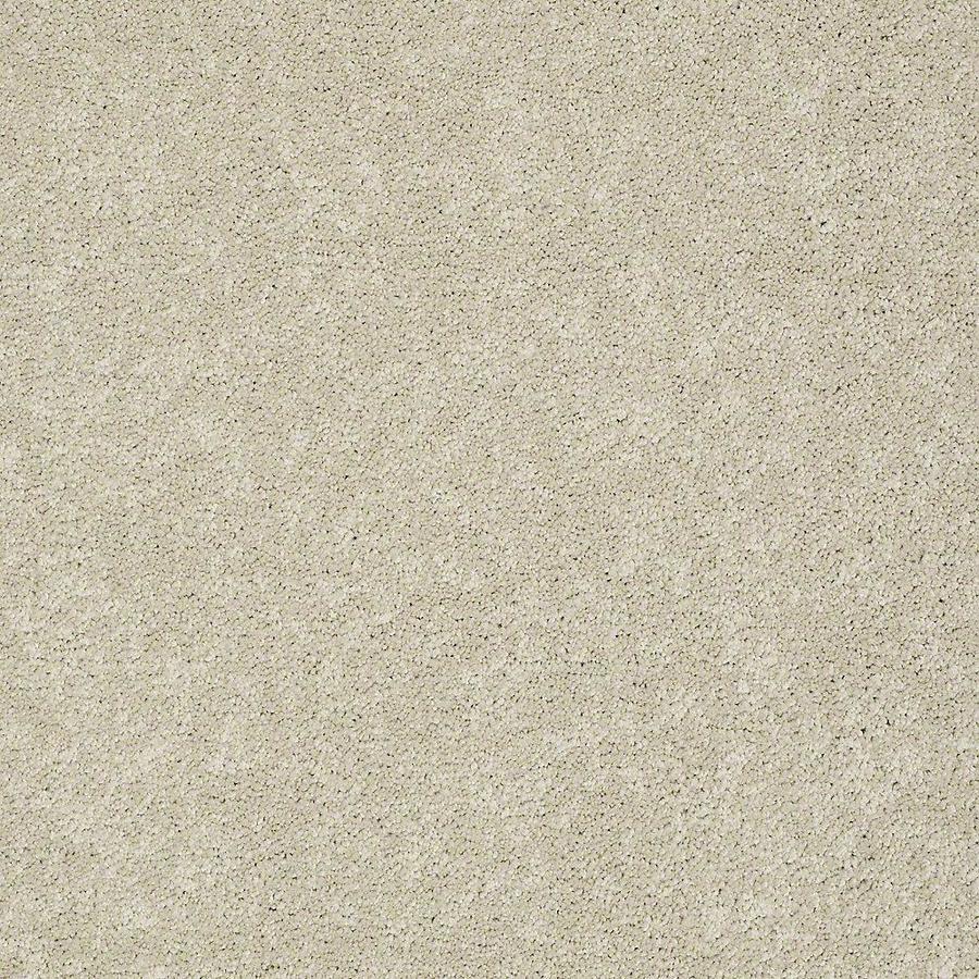 STAINMASTER PetProtect Baxter IV Sadie Plush Carpet Sample