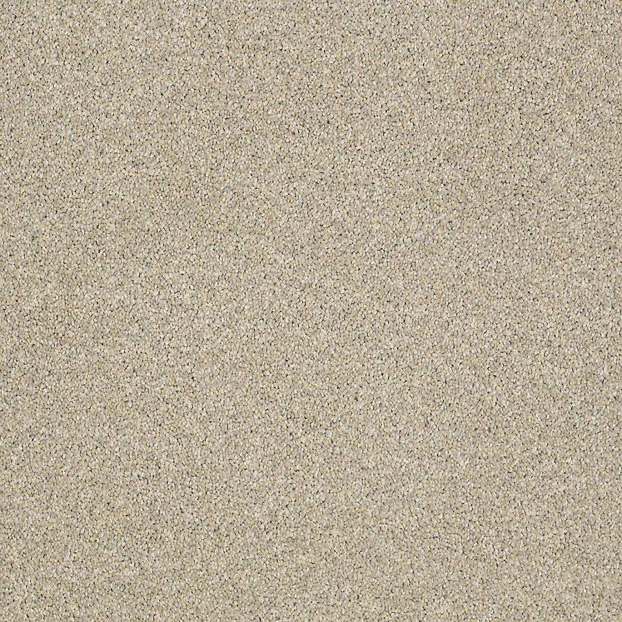 STAINMASTER Baxter IV PetProtect Izzy Plush Carpet Sample