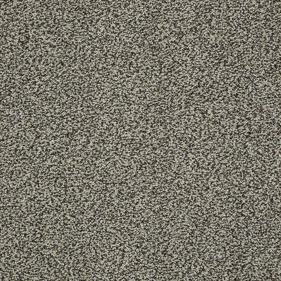 STAINMASTER Baxter IV PetProtect Tank Plush Carpet Sample