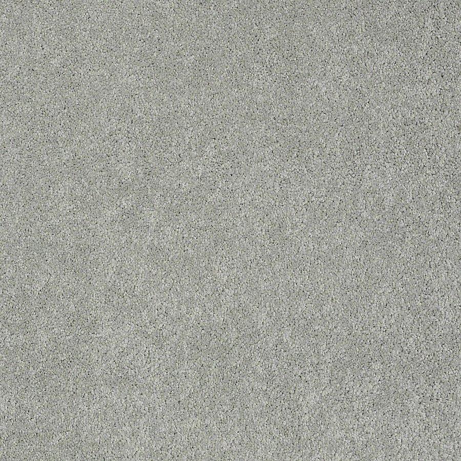 STAINMASTER Baxter IV PetProtect Bobo Plush Carpet Sample