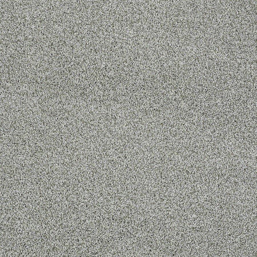 STAINMASTER PetProtect Baxter IV Doodle Plush Carpet Sample
