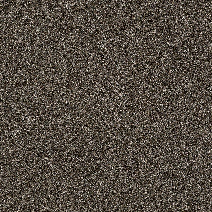 STAINMASTER PetProtect Baxter IV Sasha Carpet Sample