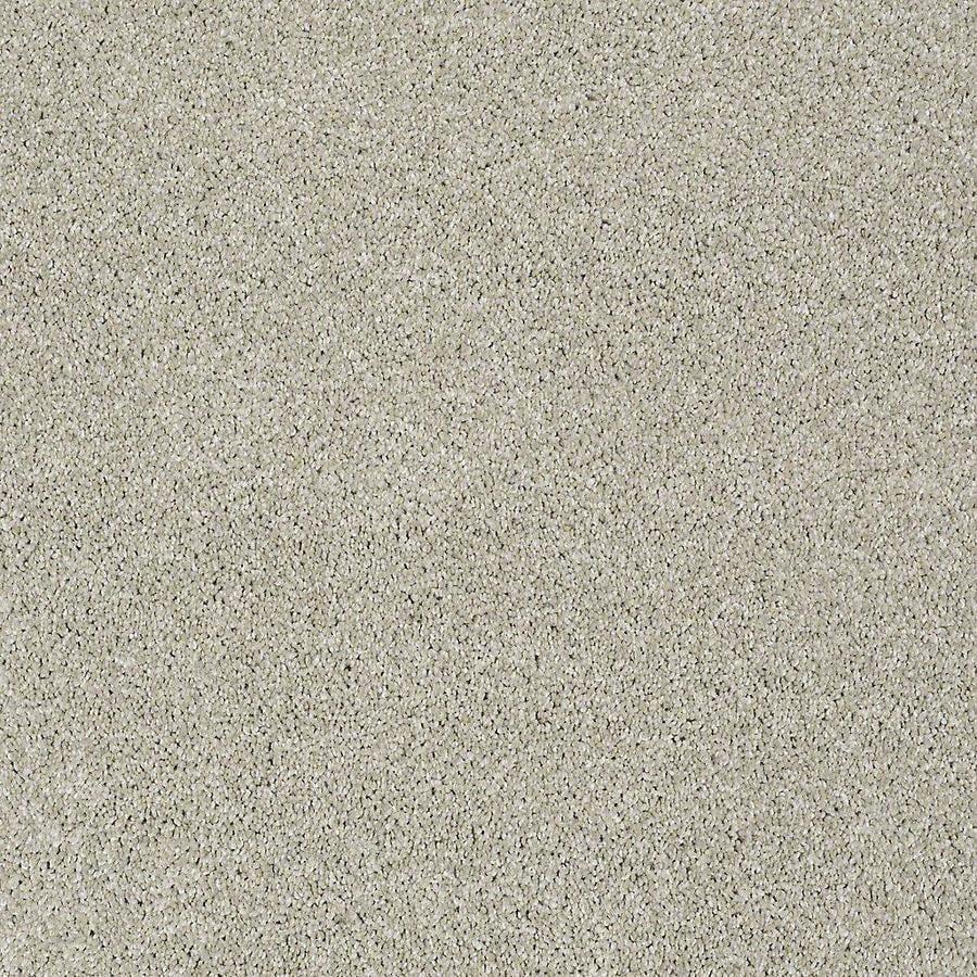 STAINMASTER PetProtect Baxter I Marmaduke Plush Carpet Sample