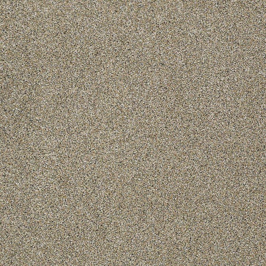 STAINMASTER Baxter I PetProtect Sophie Plus Carpet Sample