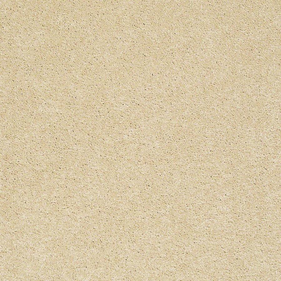 STAINMASTER Baxter I PetProtect Spaniel Plush Carpet Sample