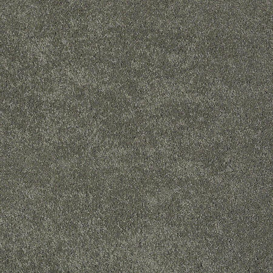STAINMASTER Baxter I PetProtect Winston Plush Carpet Sample
