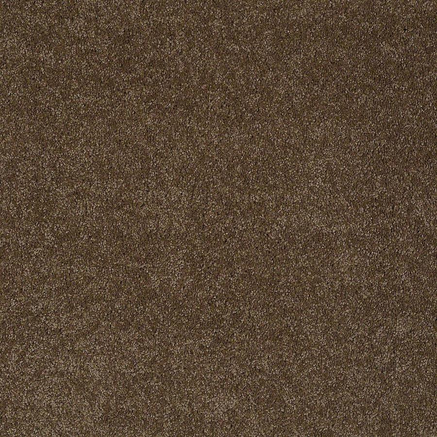STAINMASTER Baxter I PetProtect Labrador Plush Carpet Sample