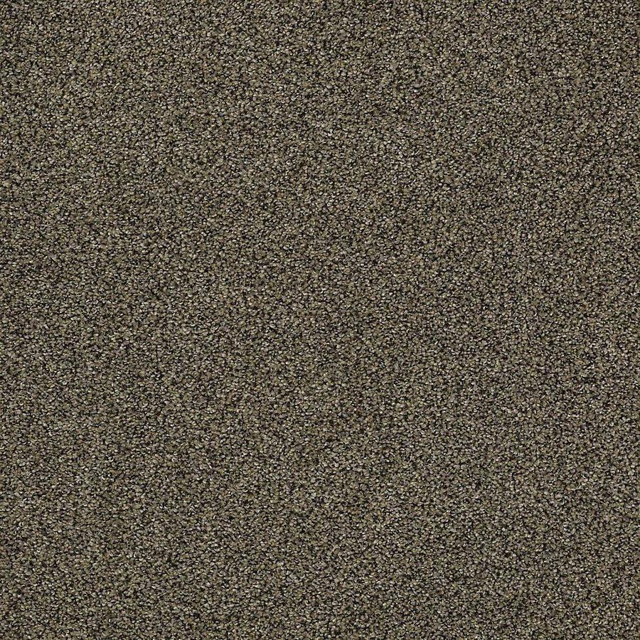 STAINMASTER PetProtect Baxter I Brody Carpet Sample