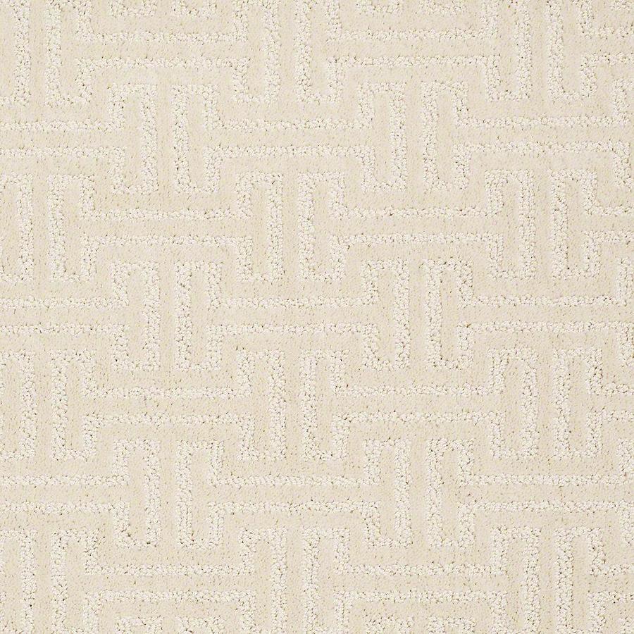 STAINMASTER PetProtect Belle Marley Carpet Sample