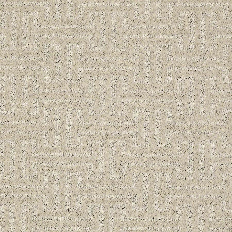 STAINMASTER PetProtect Belle Ruff Berber/Loop Carpet Sample