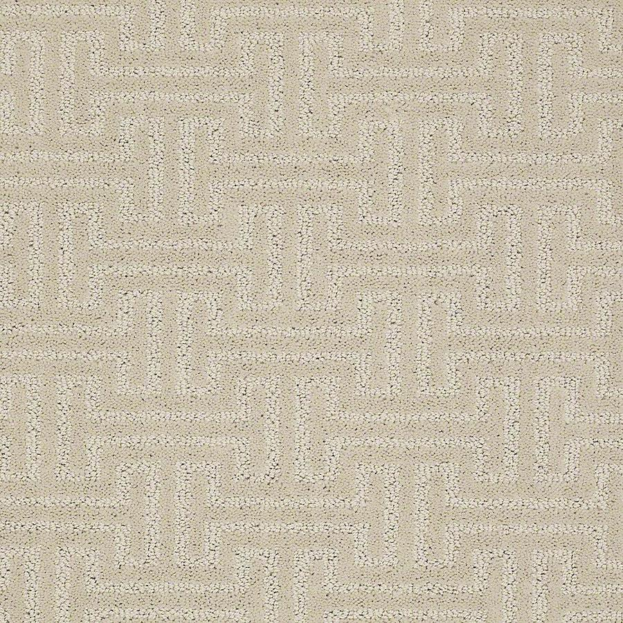 STAINMASTER Belle PetProtect Ruff Cut and Loop Carpet Sample