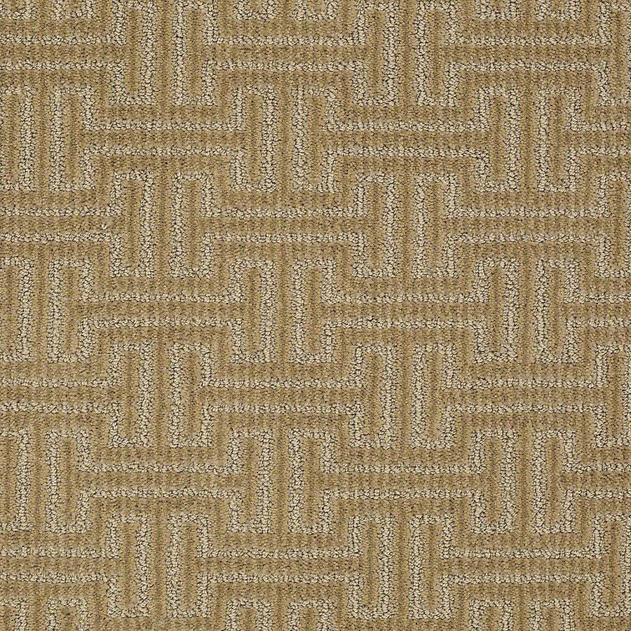 STAINMASTER PetProtect Belle Bubba Berber/Loop Carpet Sample