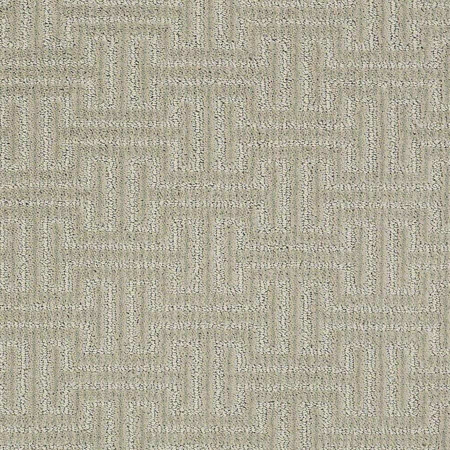 STAINMASTER Belle PetProtect Lucky Cut and Loop Carpet Sample