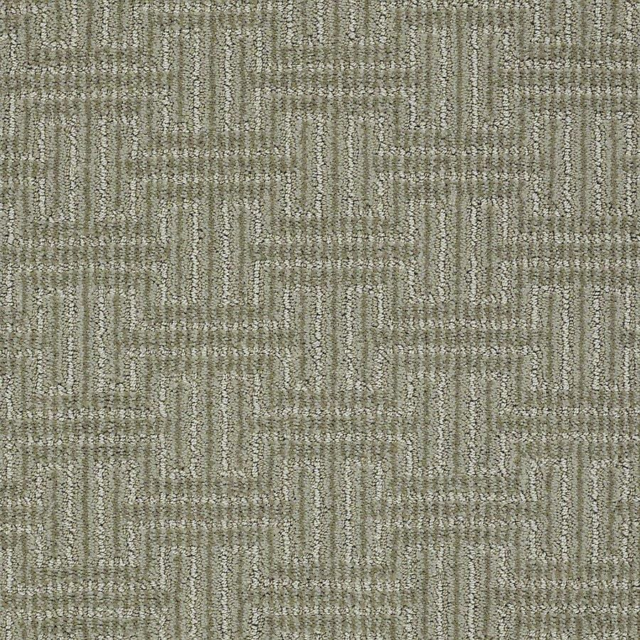 STAINMASTER Belle PetProtect Maggie Cut and Loop Carpet Sample