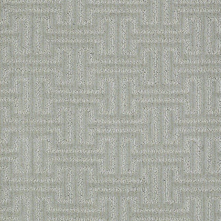 STAINMASTER Belle PetProtect Barker Cut and Loop Carpet Sample