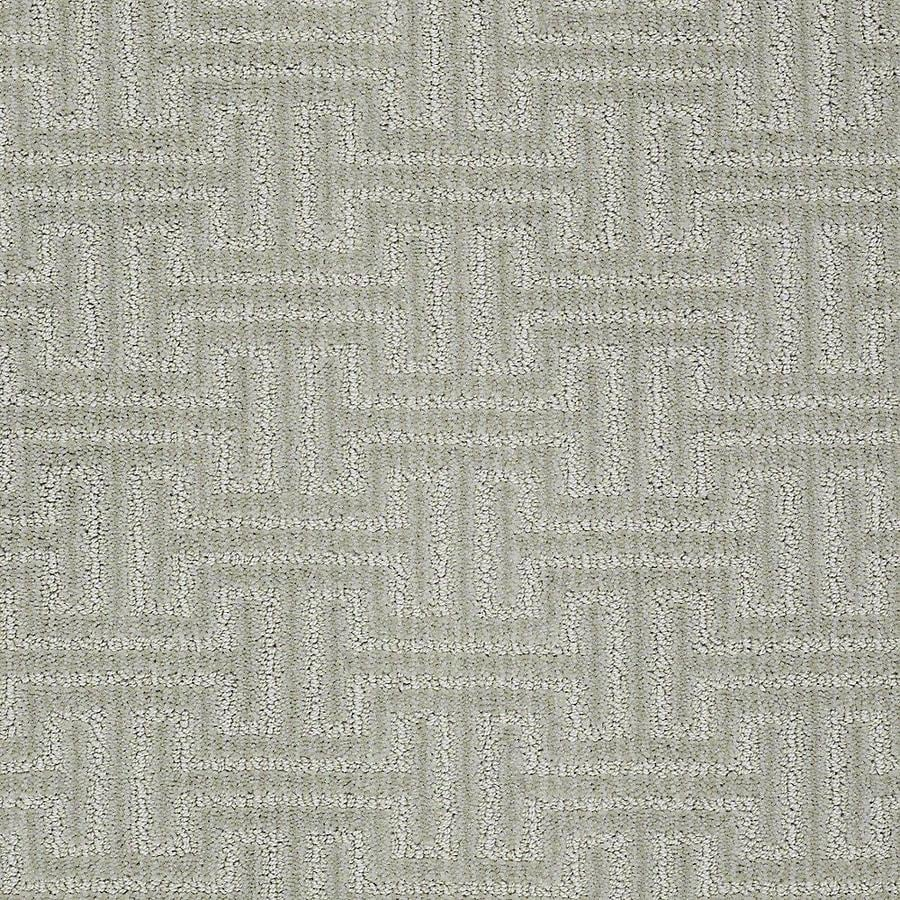STAINMASTER PetProtect Belle Milo Berber/Loop Carpet Sample