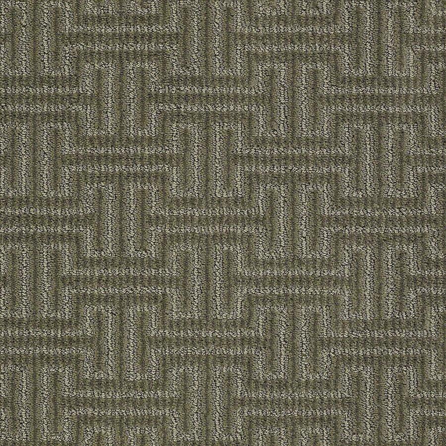 STAINMASTER PetProtect Belle Husky Berber/Loop Carpet Sample