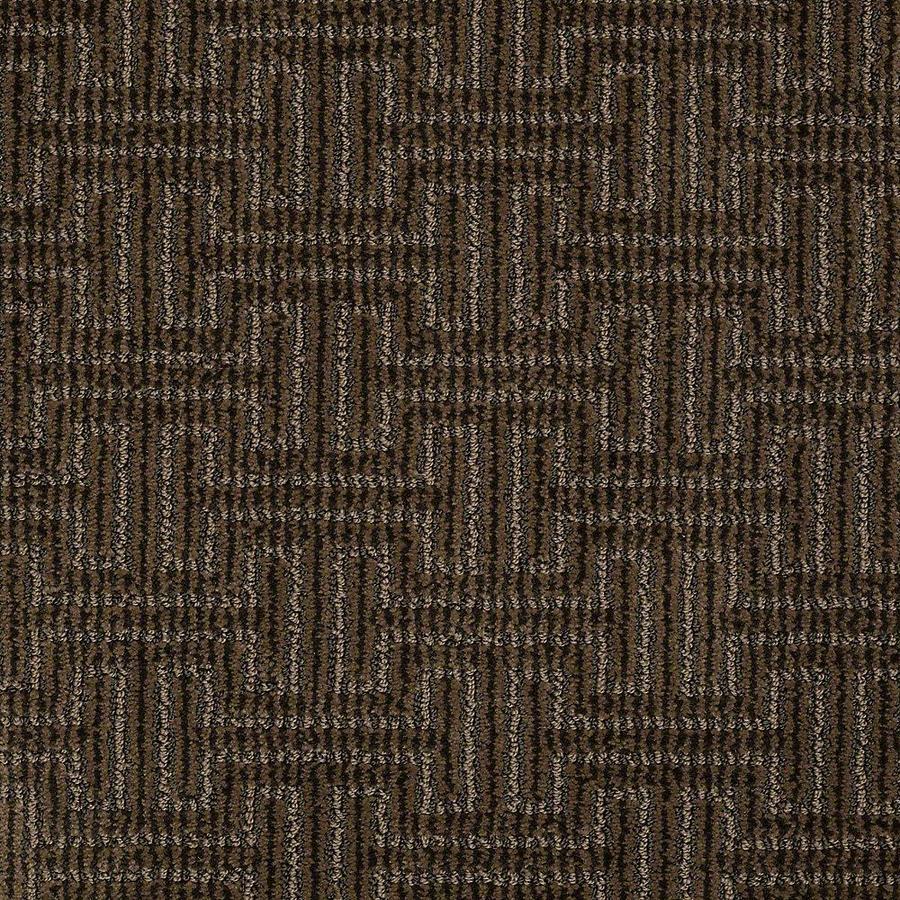 STAINMASTER Belle PetProtect Sparky Cut and Loop Carpet Sample