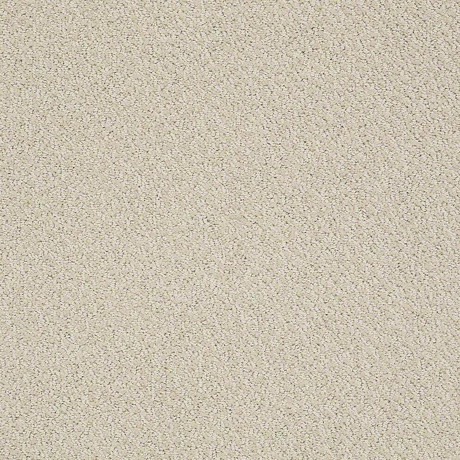 STAINMASTER Bianca PetProtect Ruff Cut and Loop Carpet Sample
