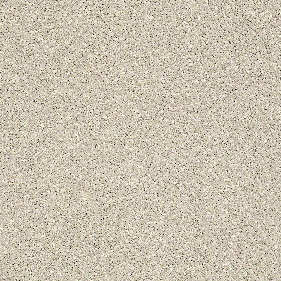 STAINMASTER PetProtect Bianca Ruff Carpet Sample