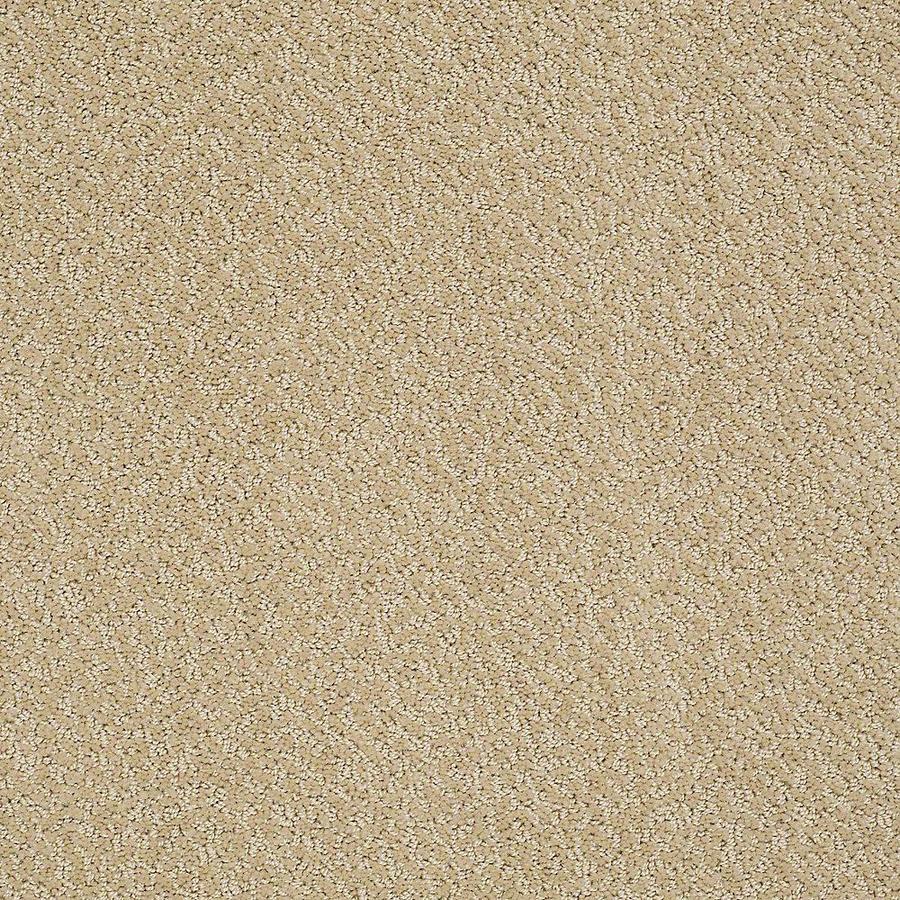 STAINMASTER PetProtect Bianca Spike Carpet Sample