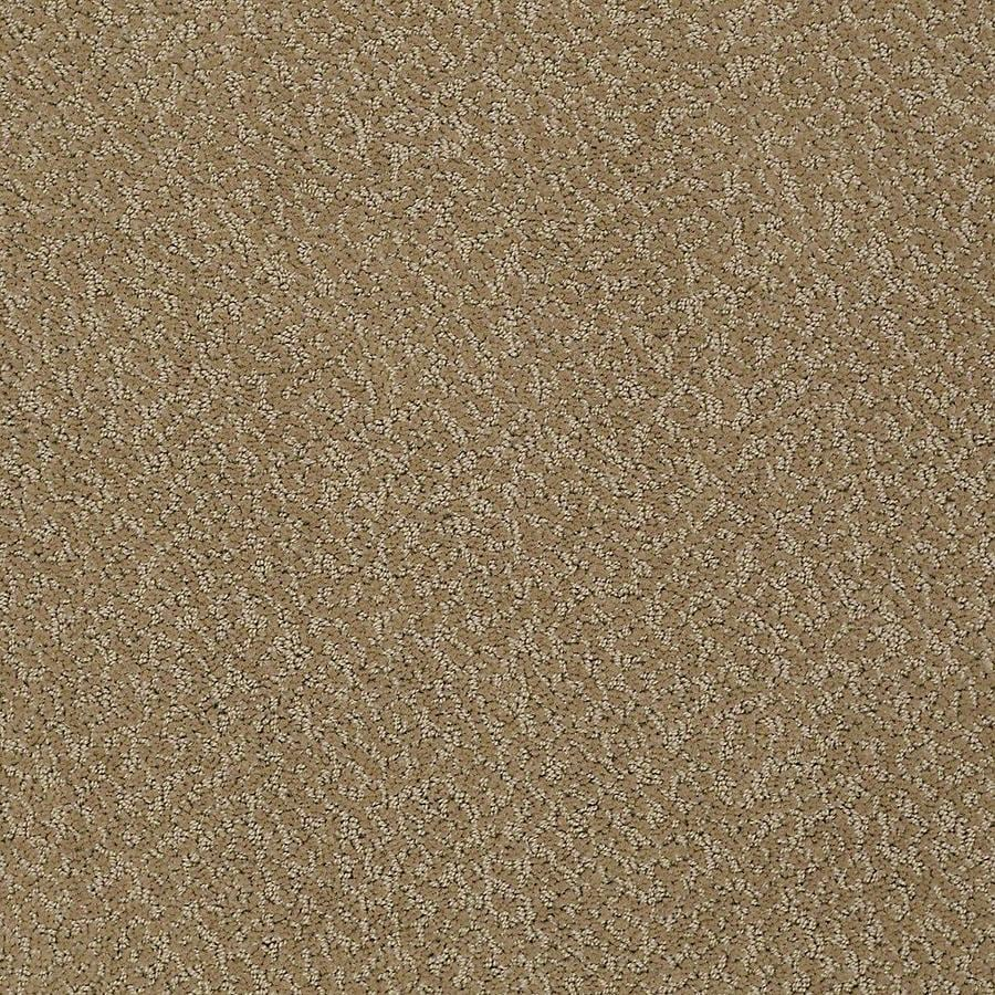 STAINMASTER PetProtect Bianca Rufus Berber/Loop Carpet Sample