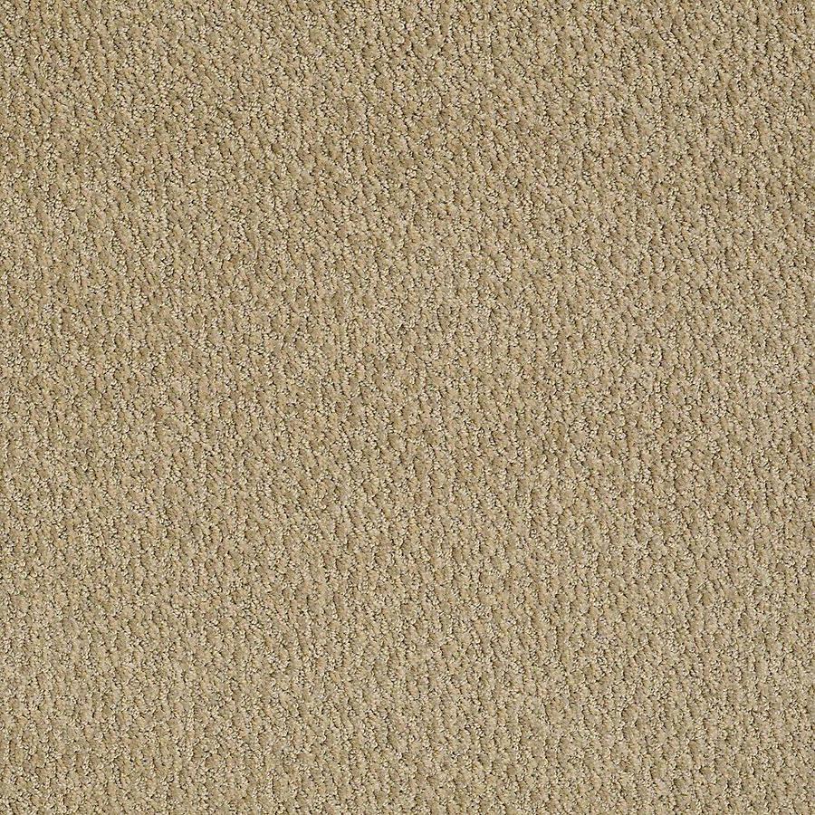 STAINMASTER Bianca PetProtect Bubba Cut and Loop Carpet Sample