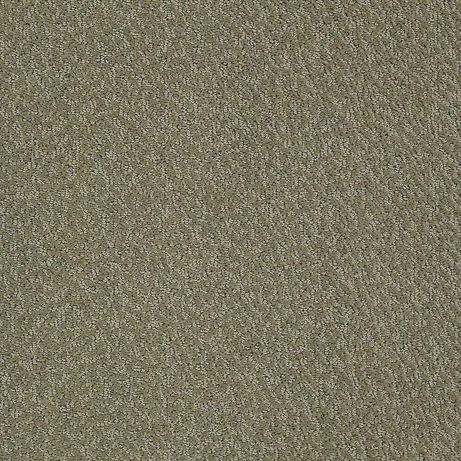 STAINMASTER Bianca PetProtect Pal Cut and Loop Carpet Sample