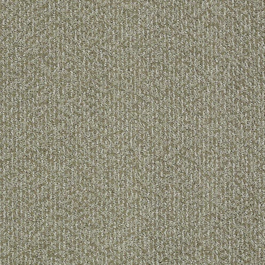 STAINMASTER Bianca PetProtect Maggie Cut and Loop Carpet Sample