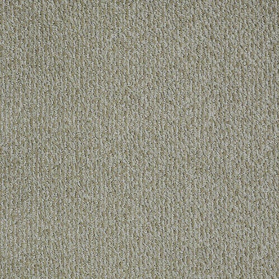 STAINMASTER PetProtect Bianca Rover Carpet Sample