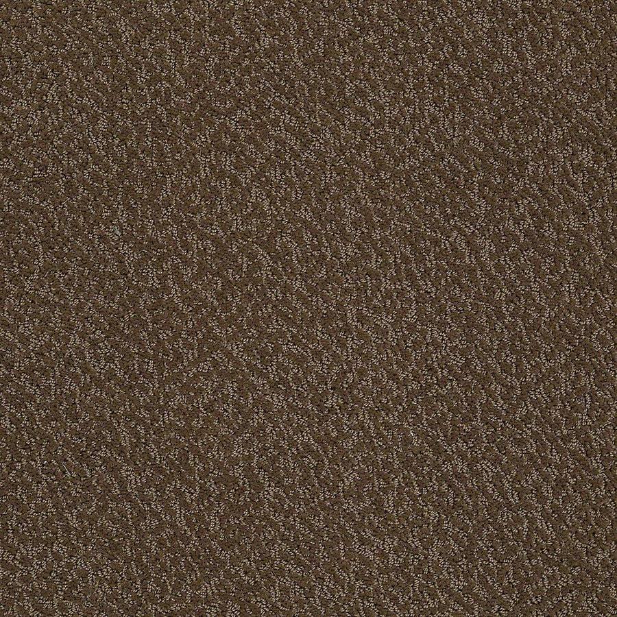 STAINMASTER Bianca PetProtect Coco Cut and Loop Carpet Sample