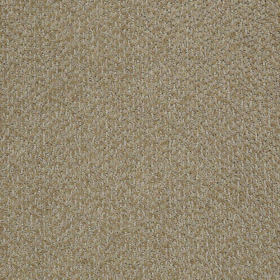 STAINMASTER PetProtect Bianca Collie Berber/Loop Carpet Sample