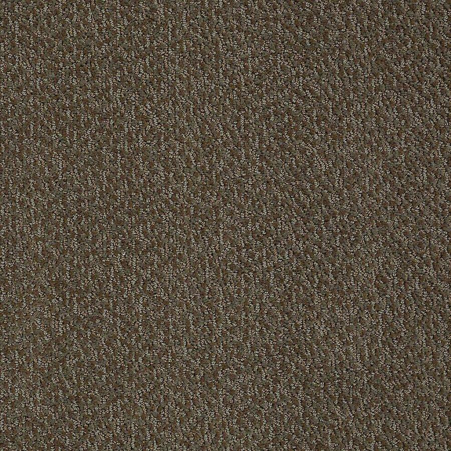 STAINMASTER Bianca PetProtect Penny Cut and Loop Carpet Sample