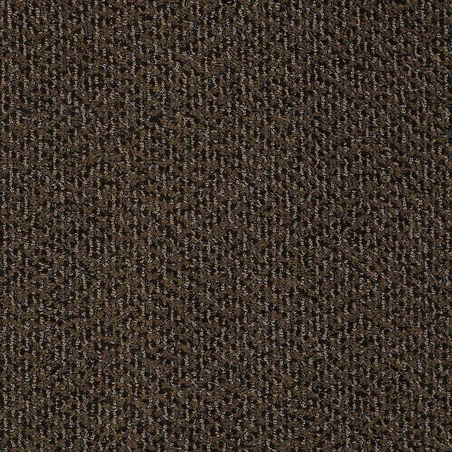 STAINMASTER Bianca PetProtect Sparky Cut and Loop Carpet Sample