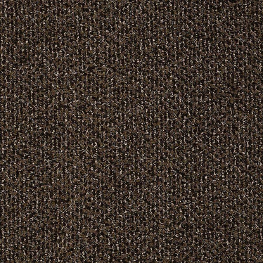 STAINMASTER PetProtect Bianca Sparky Carpet Sample