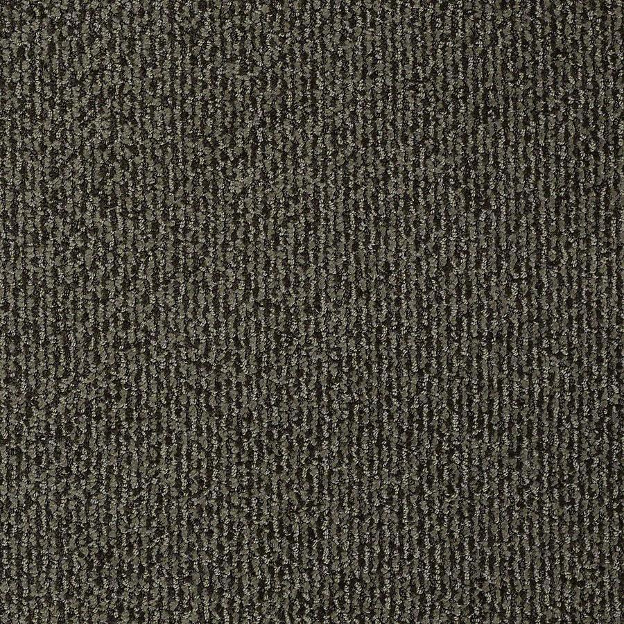 STAINMASTER Bianca PetProtect Toby Cut and Loop Carpet Sample