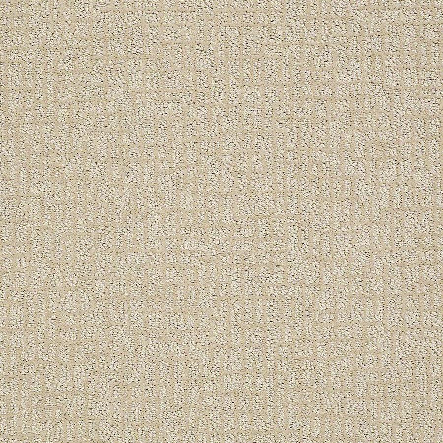 STAINMASTER PetProtect Bitzy Duke Carpet Sample