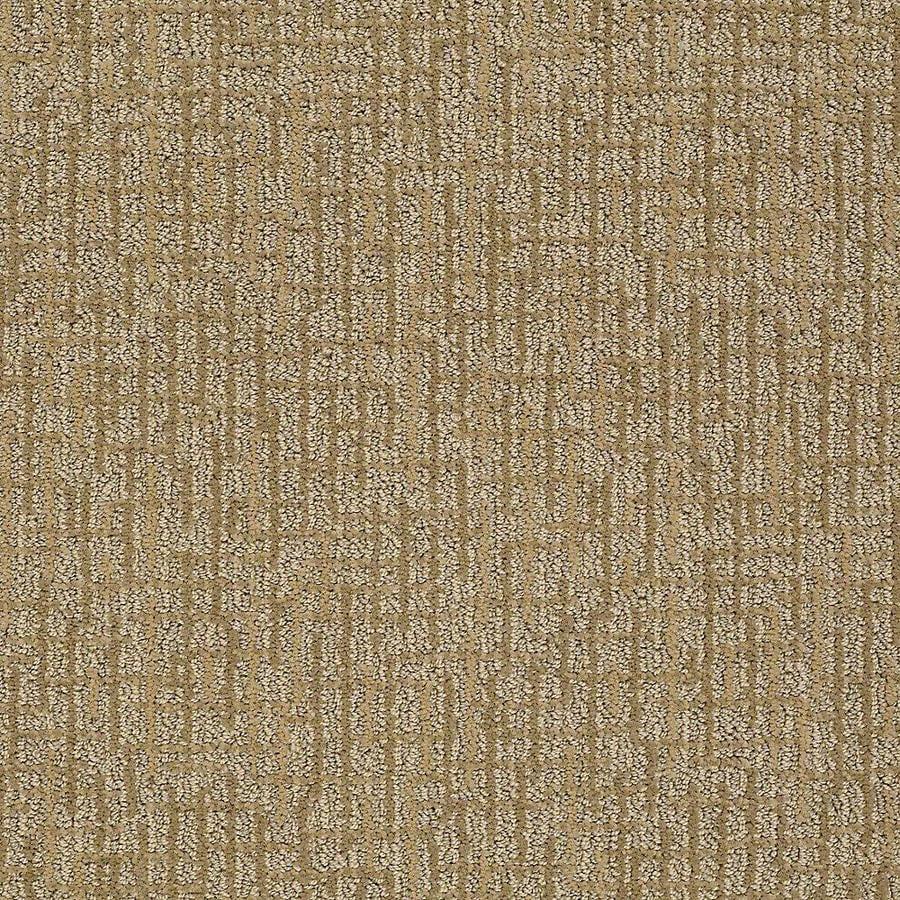 STAINMASTER Bitzy PetProtect Bubba Cut and Loop Carpet Sample