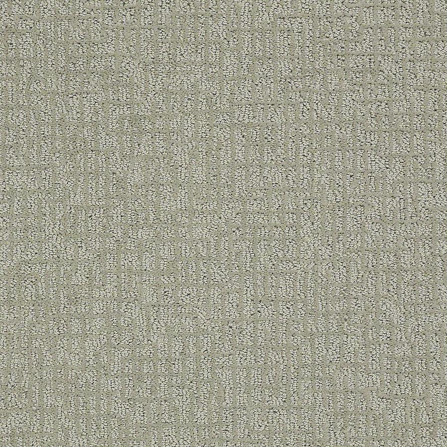 STAINMASTER PetProtect Bitzy Fetch Berber/Loop Carpet Sample