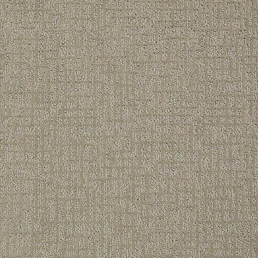 STAINMASTER Bitzy PetProtect Hank Cut and Loop Carpet Sample