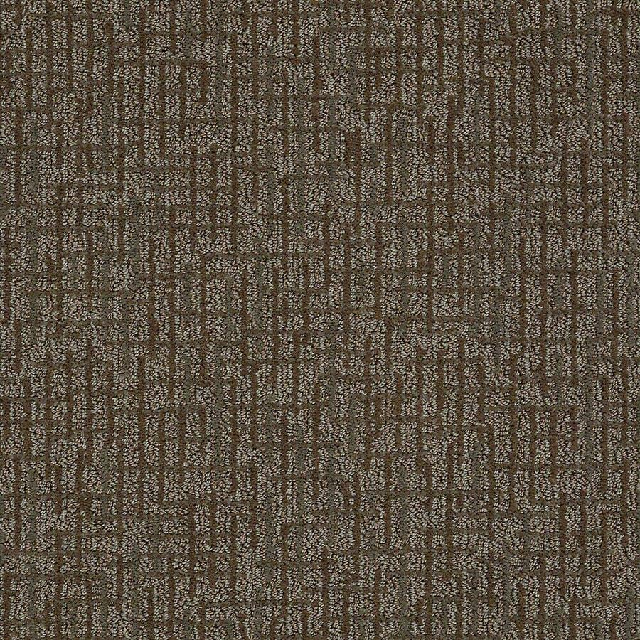 STAINMASTER PetProtect Bitzy Penny Berber/Loop Carpet Sample