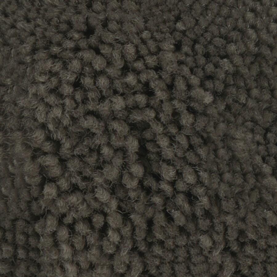 STAINMASTER Belle PetProtect Oscar Cut and Loop Carpet Sample