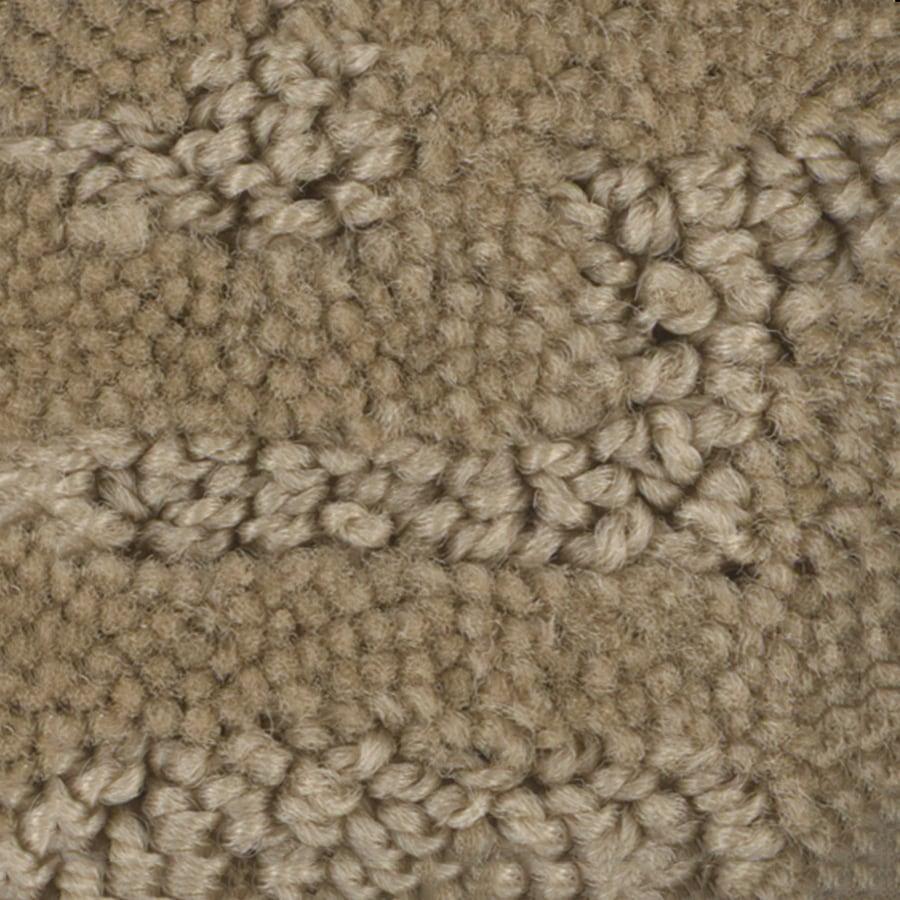 STAINMASTER Bianca PetProtect Max Cut and Loop Carpet Sample