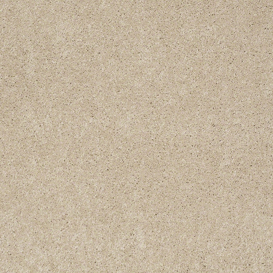 STAINMASTER Active Family Supreme Delight Pacific Pearl Plush Carpet Sample