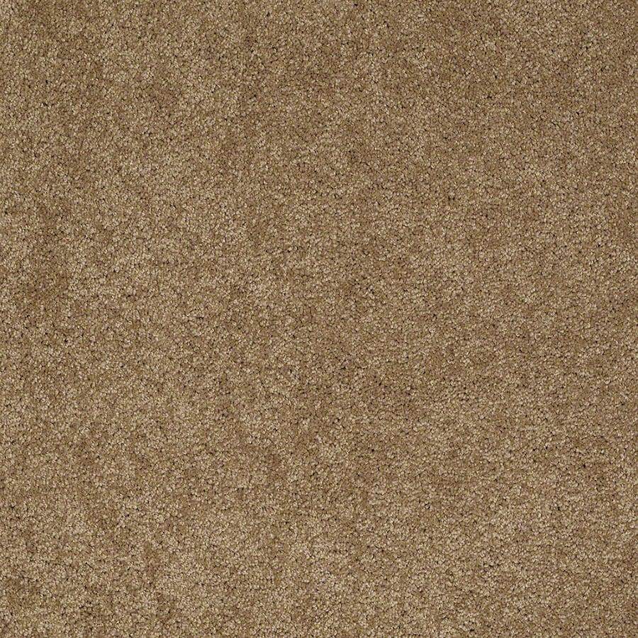 STAINMASTER Supreme Delight Active Family Cedar Chest Plus Carpet Sample