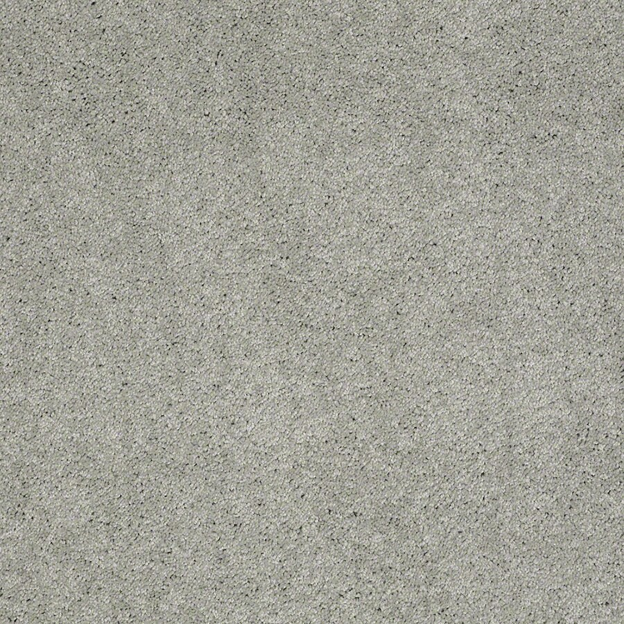 STAINMASTER Active Family Supreme Delight Mystical Carpet Sample