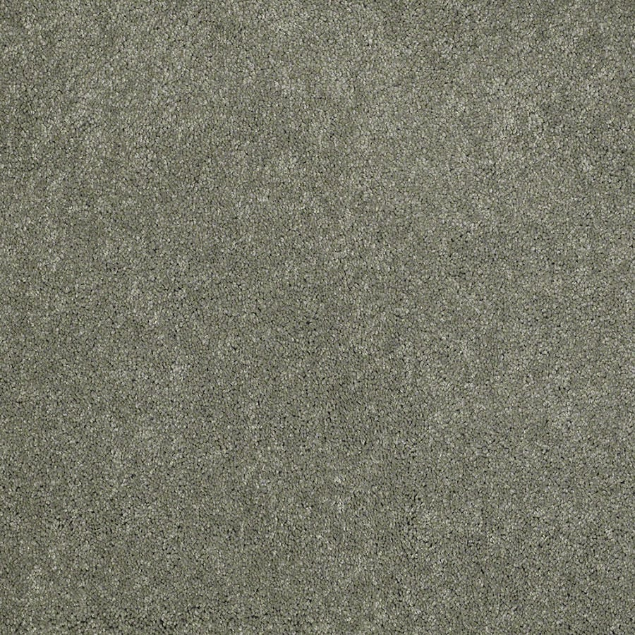 STAINMASTER Active Family Supreme Delight Fresh Dew Plush Carpet Sample