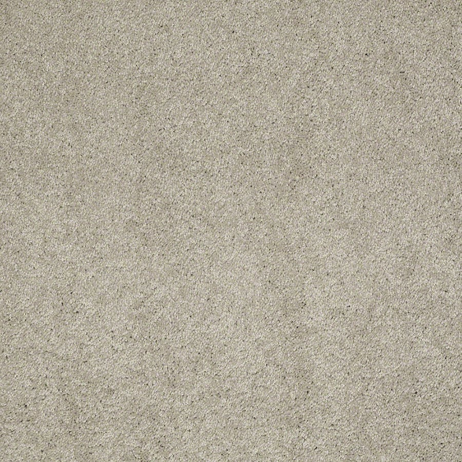 STAINMASTER Active Family Supreme Delight Limestone Carpet Sample